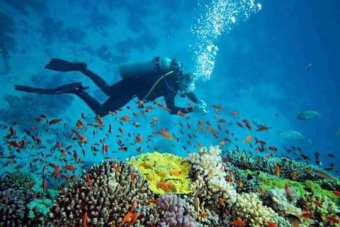 Scuba Diving in Havelock Island, Andaman, Travel, Lake, Feet, Resting, Hiking, Hiker, Outdoors